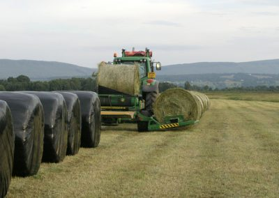 Haylage being made for winter feed