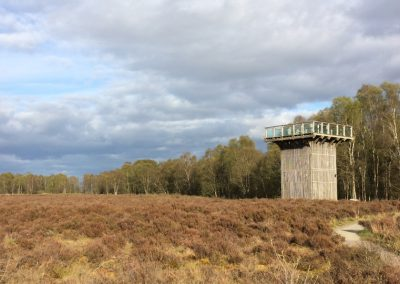 The viewing tower on Flanders Moss National Nature Reserve – for a cracking view of West Moss-side!