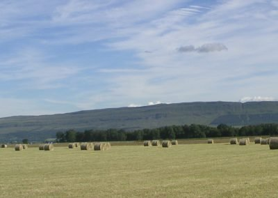 Hay made at West Moss-side on the edge of Flanders Moss National Nature Reserve