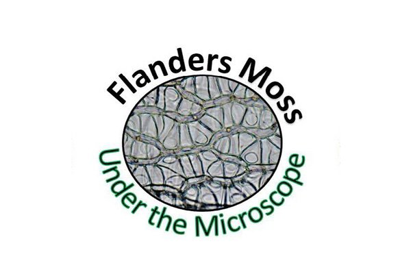 Flanders Moss Under the Microscope